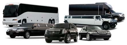 8 9 10 and 18 passenger limousines photo
